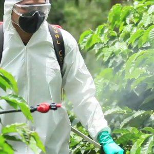 Pesticides & Crop Management